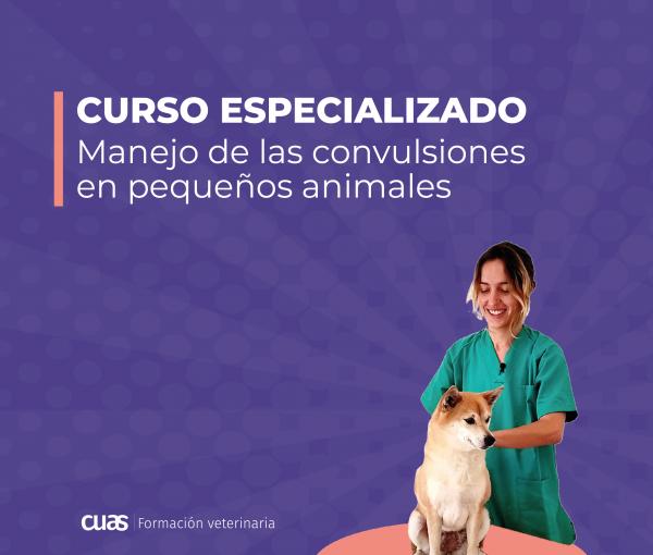 MARIA-POSRTADA_PORTADA-CURSO-CUADRADA