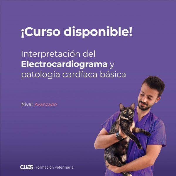 Slide-Insta-Curso-disponible_Proximamente-ECG copia 2